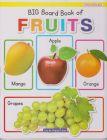 BIG BOARD BOOK OF FRUITS