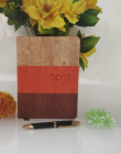 High-Quality Paper Stylish 2021 Year Diary Record Your Travel & Note (Multi-Color) (Pack of 1)