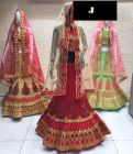 Jashikthaindustries Stylish & Fashionable Beautiful Lehenga Choli Perfect For Women's (Basic Fabrics Mono -Net)