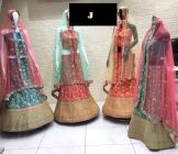 Jashikthaindustries Stylish & Fashionable Beautiful Lehenga Choli Perfect For Women's (Jari+Codding Work)