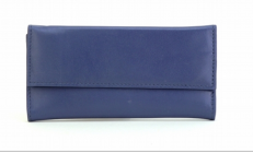 ASPENLEATHER Designer Leather Jewellery Bag For Women (Blue)