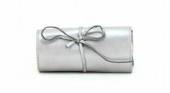 ASPENLEATHER Designer Leather Jewellery Bag For Women (Silver)