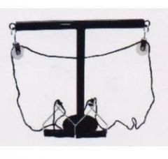Albio Shoulder T Pulley For Physiotherapy and Rehabilitation