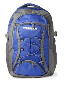 Have A Look 15.6 Inch Laptop/School/Casual Backpack (Blue & Grey)