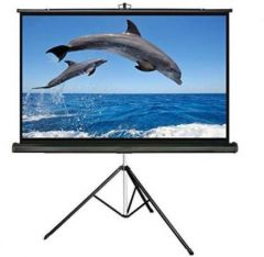 Royality 05-AJM5-ZAIY NW Projector Screen (Width 243.84 cm x 182.88 cm Height)