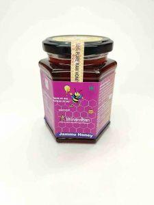 Bhavani Foods 100% Pure Raw Natural Unprocessed Jamun Honey (350 GMS) (Pack Of 1)