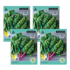 Classmate Notebook - Single Line, 120 Pages, 240 mm x 180 mm - Pack Of 4