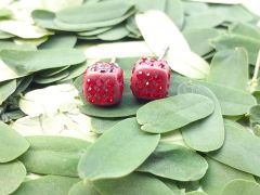 Astrogemsindia Trendy and Designer 92.5 Sterling Silver Red Cube Stone with Mini Diamond Earring For Women & Girls