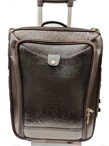 Elegant Exclusives Expandable Lightweight Durable Hard-shell with 4 Wheel Spinner 20-Inch Carry Ideal for Cabin Size Luggage | Trolley Bag | Travel Accessory (Chocolate)