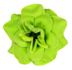 Homeoculture Bright Green Stem Flower Hair Clips | Looks Like Natural Flower | Latest Design Hair Accessories (Pack of 2)