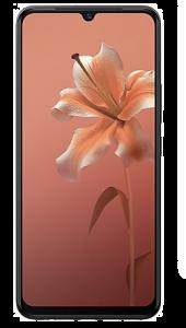 VIVO V20 Smartphone (MIDNIGHT JAZZ, 256GB, 8GB RAM) | Pack of 1