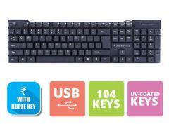 Zebronic K16 Standard Keyboard with USB Input (Black) (Pack of 1)