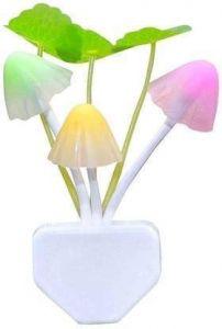 Night Light Mushroom Lamp for Home decoration (Multicolor)