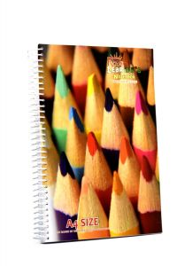 Premium Quality A4 Royal Learner's Spiral Notebook With 320 Pages (Pack of 1)