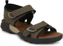 Men Stylish & Fashionable Olive Casual Sandal (Pack of 1)
