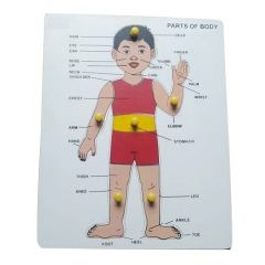Parts of Body Puzzle For Kids (Learning) (Pack Of 1)