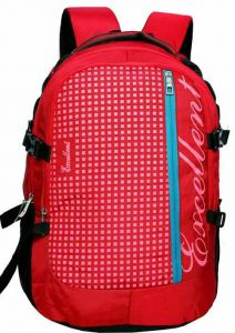 AE EXCELLENT Large Laptop Backpack With Raincover For Men & Women