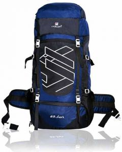 AE EXCELLENT- Solid Print Travel Backpack For Outdoor Sport Hiking Trekking Bag (Capacity: 65 L) (Pack of 1)