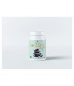 SnapOrganic SHILAJIT Natural Energy Booster 60 Capsule (100 gm)