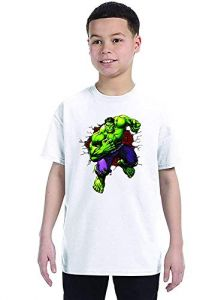 Hulk Printed T-Shirts Round Neck Half-Sleeves Regular Fit for Kids (Pack of 1)