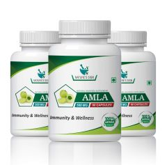 Nature's Sign Amla for Immunity and Wellness, 60 Capsules 500 mg (Pack of 1)